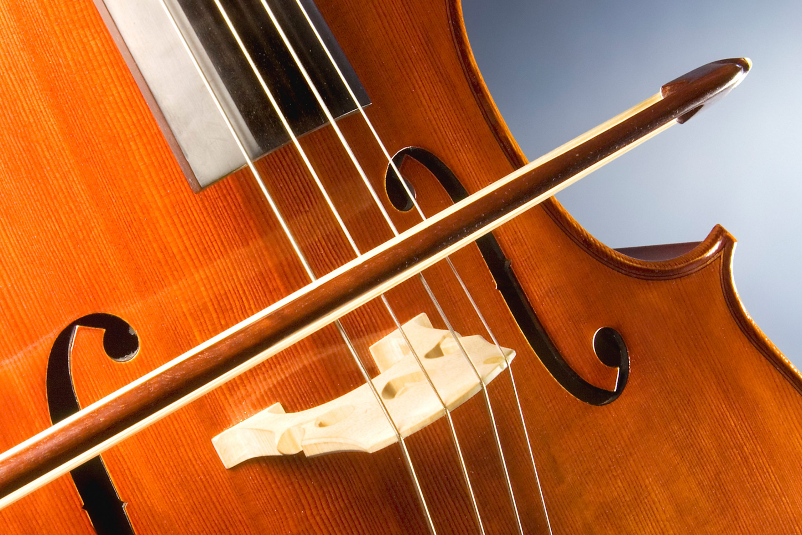Violin Lessons in Bexley, Ohio 43209 Music Piano Violin Viola Bass Cello Strings Singing Voice Guitar Ukulele Brass Trumpet Euphonium Woodwinds Oboe Flute Saxophone Clarinet Drums Percussion Lessons Classes Teachers Instructors Online Virtual Columbus, OH Bexley, OH